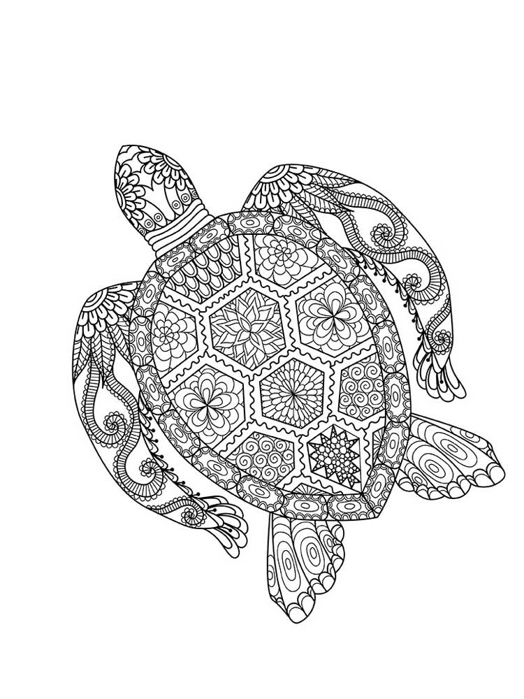 turtle printable coloring pages get this online printable turtle coloring pages rczoz pages coloring printable turtle