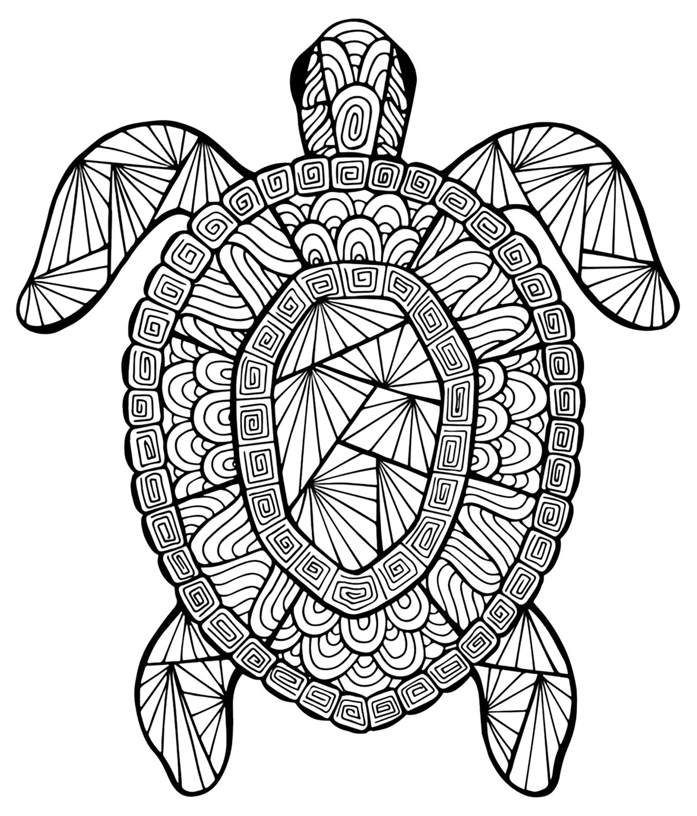 turtle printable coloring pages sea turtle coloring pages for adults at getcoloringscom turtle coloring pages printable