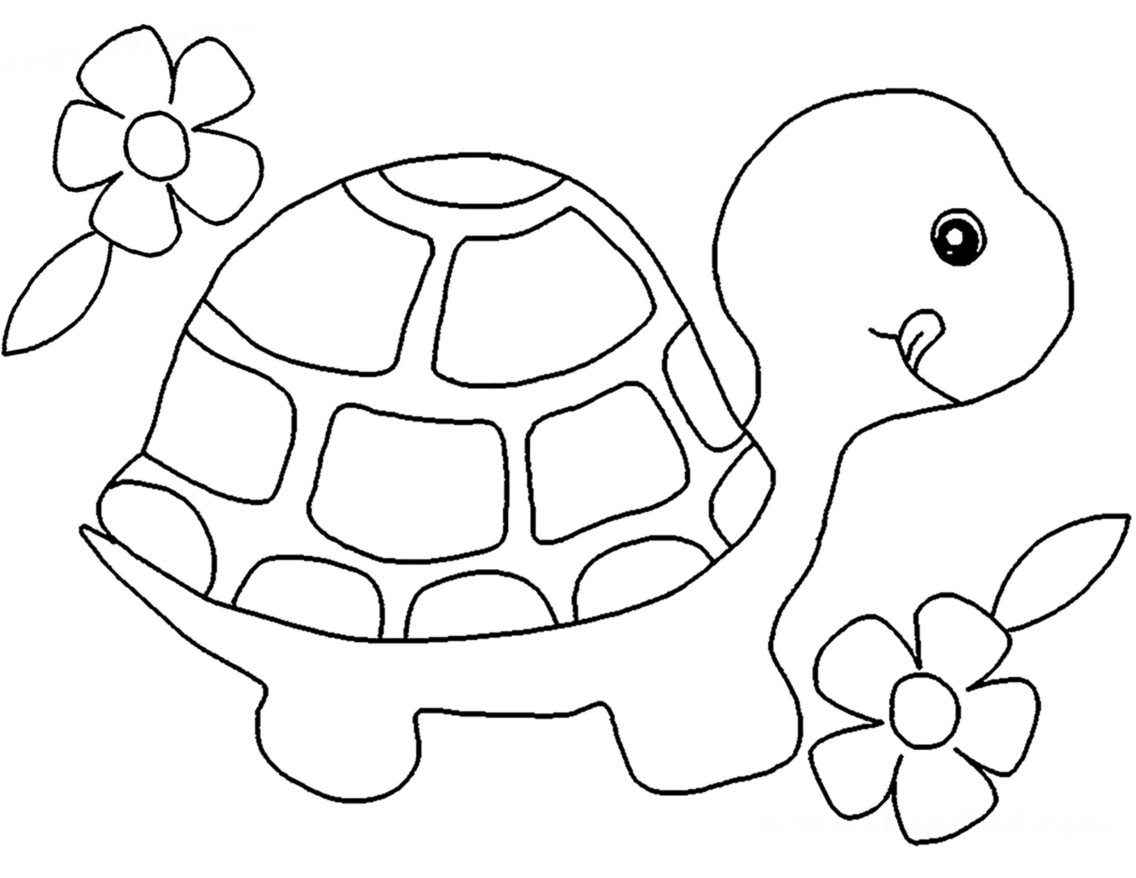turtle printable coloring pages turtle cartoon coloring page a free ocean coloring printable turtle coloring printable pages