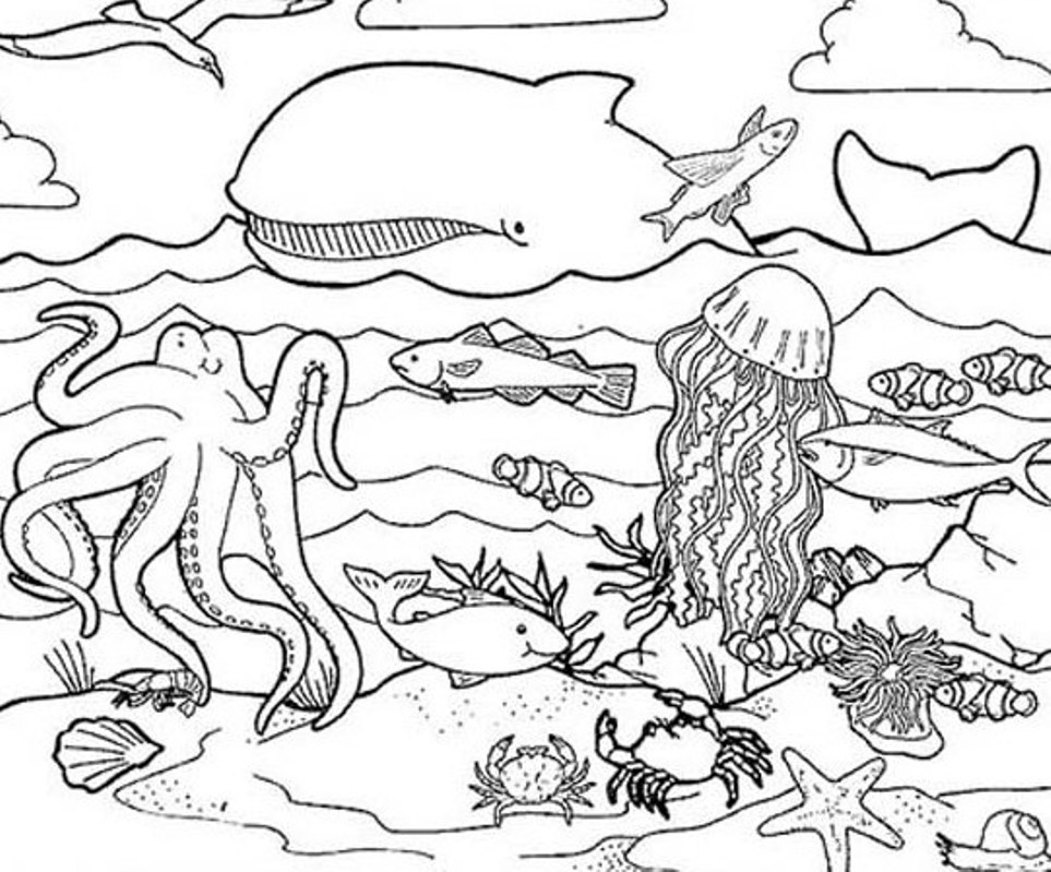 under the sea coloring free under the sea coloring pages to print for kids the under coloring sea