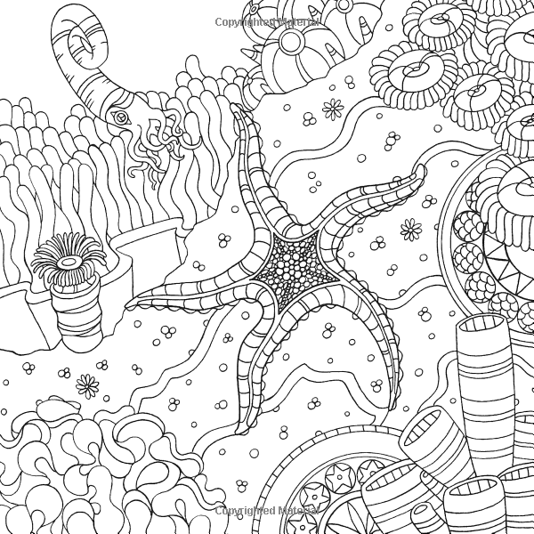 under the sea coloring pages pdf free under the sea clipart black and white download free coloring sea pages pdf under the