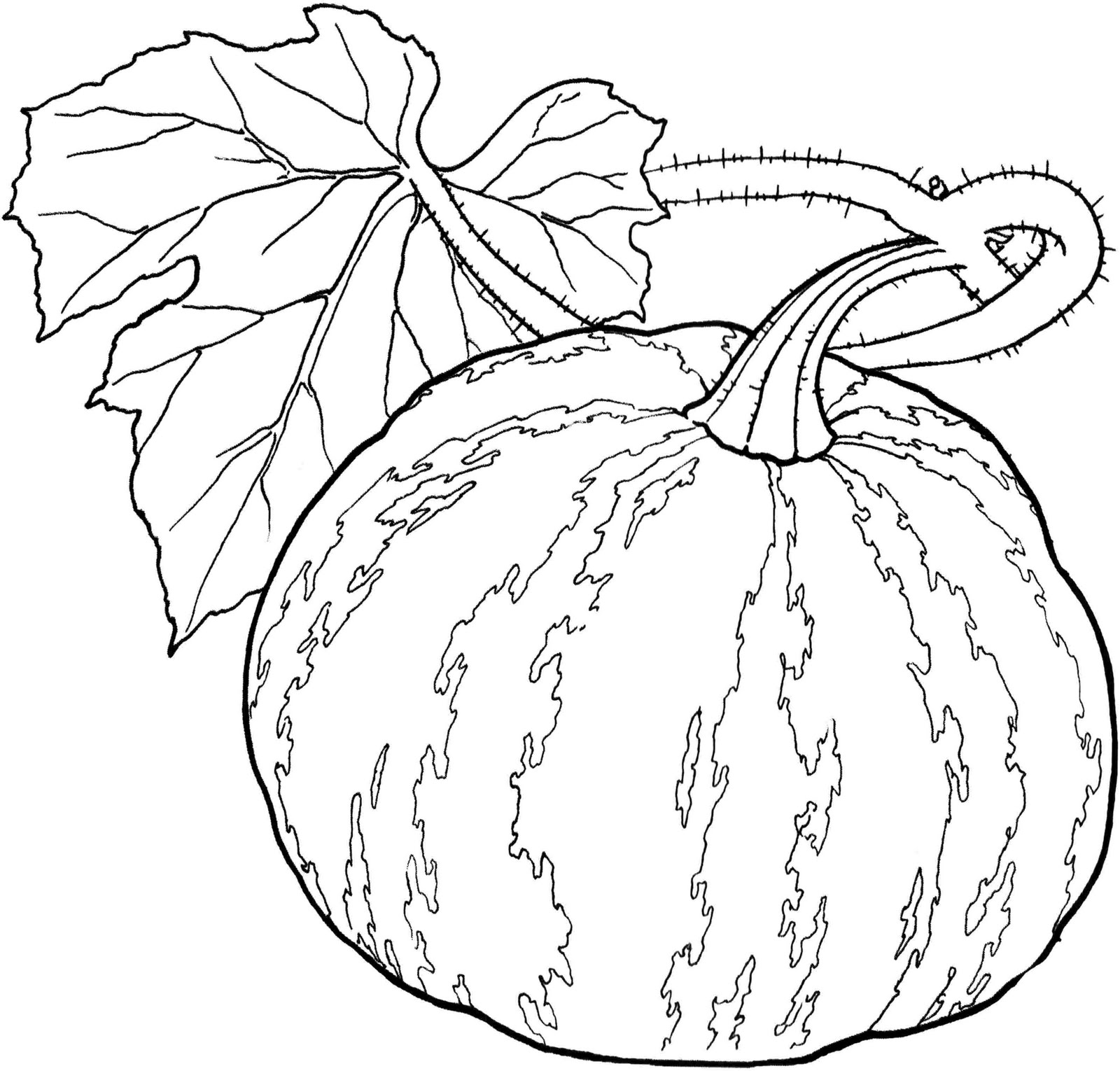 vegetables images for colouring vegetables drawing for kids at getdrawings free download colouring images vegetables for