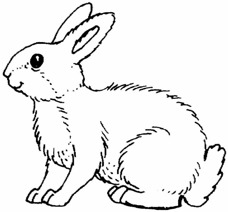 velveteen rabbit coloring pages the velveteen rabbit coloring book book by charles velveteen pages coloring rabbit