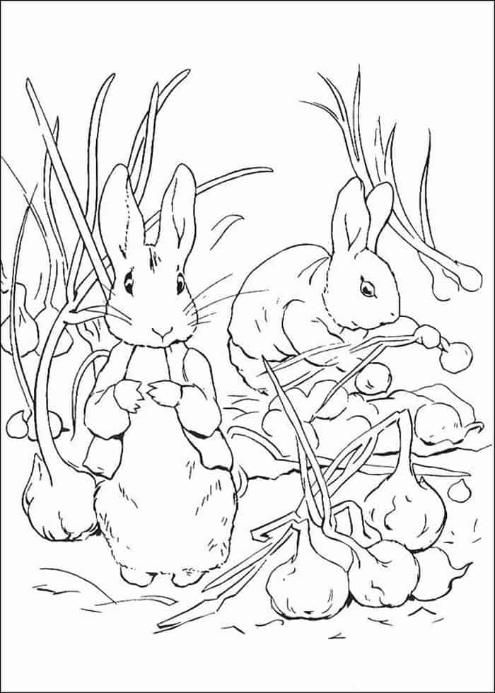 velveteen rabbit coloring pages the velveteen rabbit coloring book book by charles velveteen rabbit pages coloring