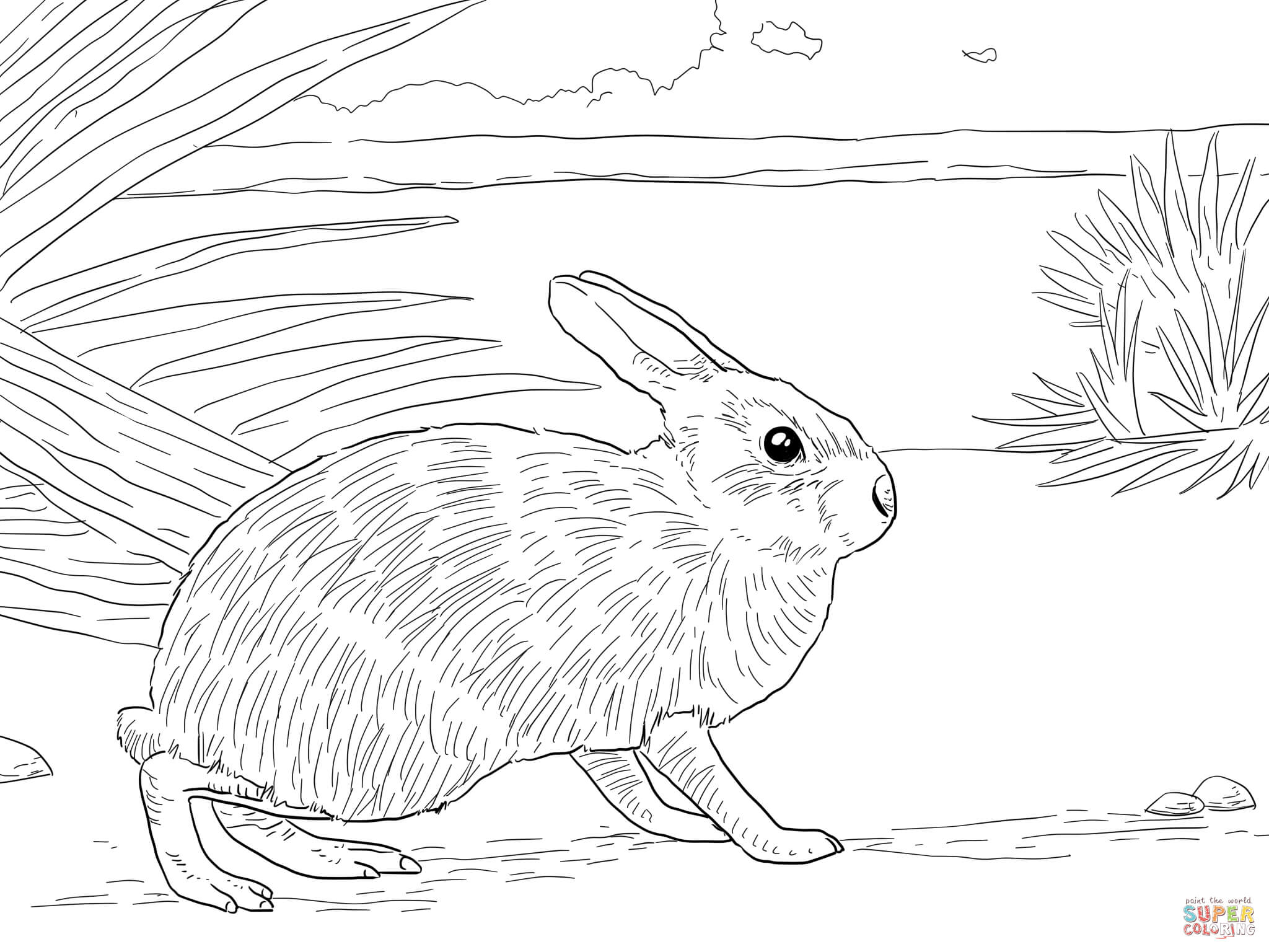 velveteen rabbit coloring pages welcome to dover publications pages velveteen rabbit coloring