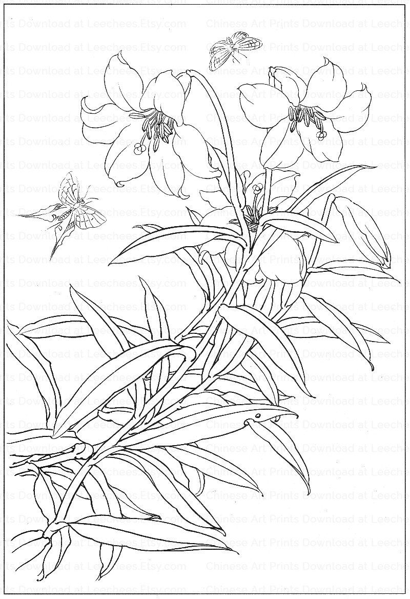 vintage flower coloring pages beautiful flower coloring pages flower coloring pages coloring vintage pages flower