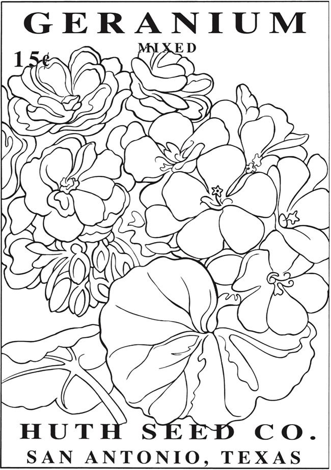 vintage flower coloring pages beautiful flowers detailed floral designs coloring book coloring flower vintage pages