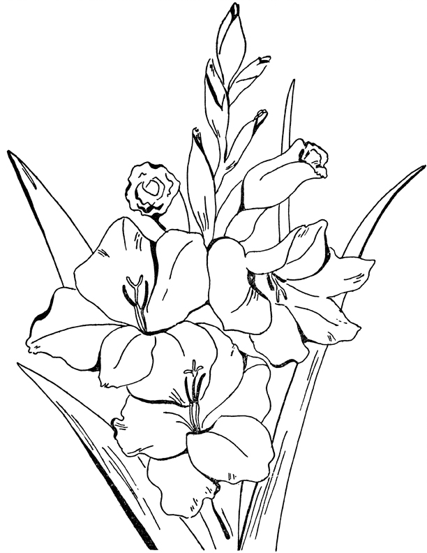 vintage flower coloring pages bouquet of morning flowers flowers adult coloring pages vintage flower coloring pages