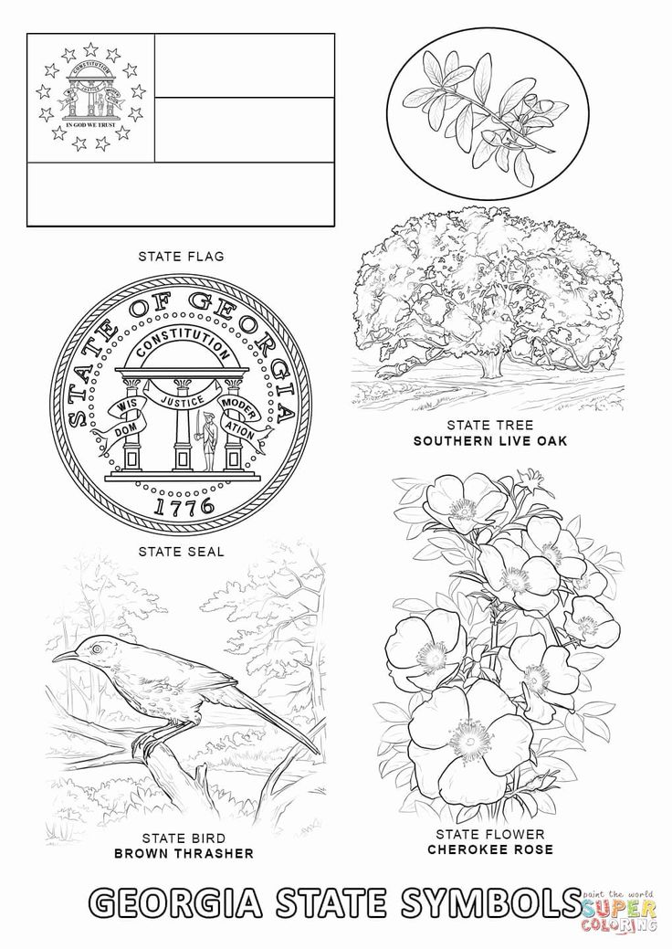virginia state symbols coloring pages virginia state flag coloring page di 2020 state virginia pages coloring symbols