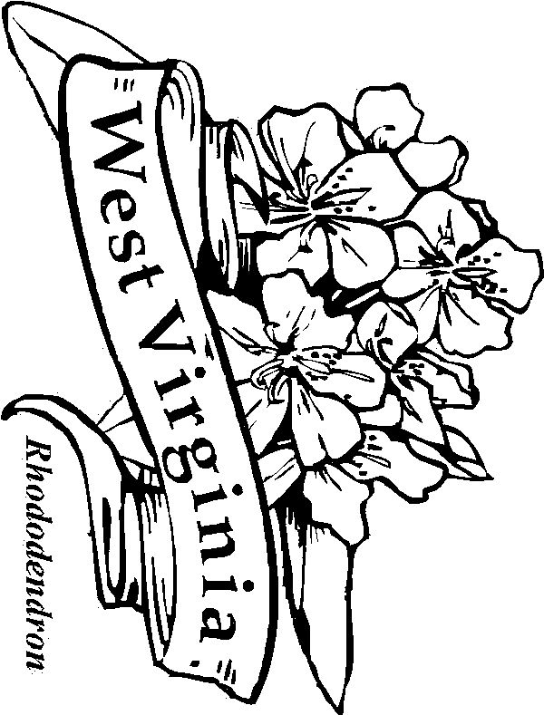 virginia state symbols coloring pages virginia state symbols super coloring state symbols pages virginia state coloring symbols