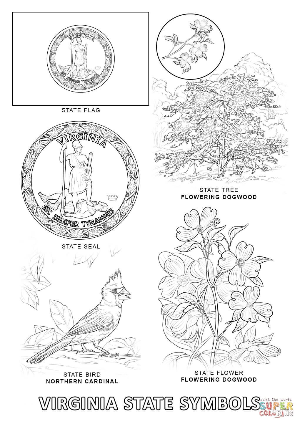 virginia state symbols coloring pages west virginia coloring pagecoloring pages for all 50 coloring pages state symbols virginia