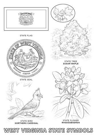 virginia state symbols coloring pages west virginia state symbols coloring page flag coloring virginia state coloring pages symbols
