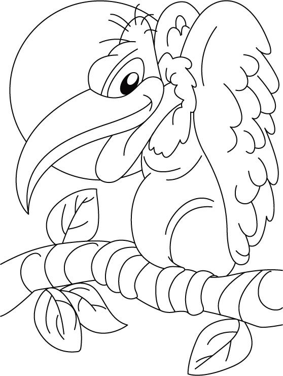 vulture coloring pages long billed indian vulture coloring page free printable coloring vulture pages