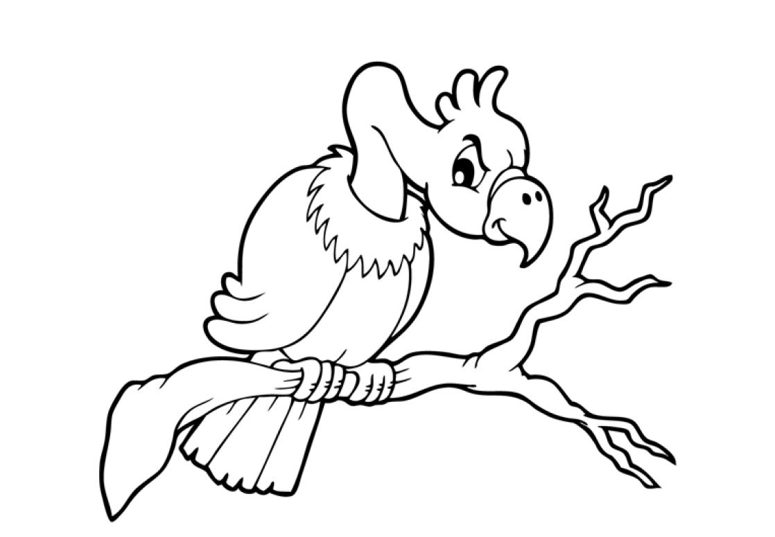 vulture coloring pages vulture coloring page getcoloringpagescom vulture coloring pages
