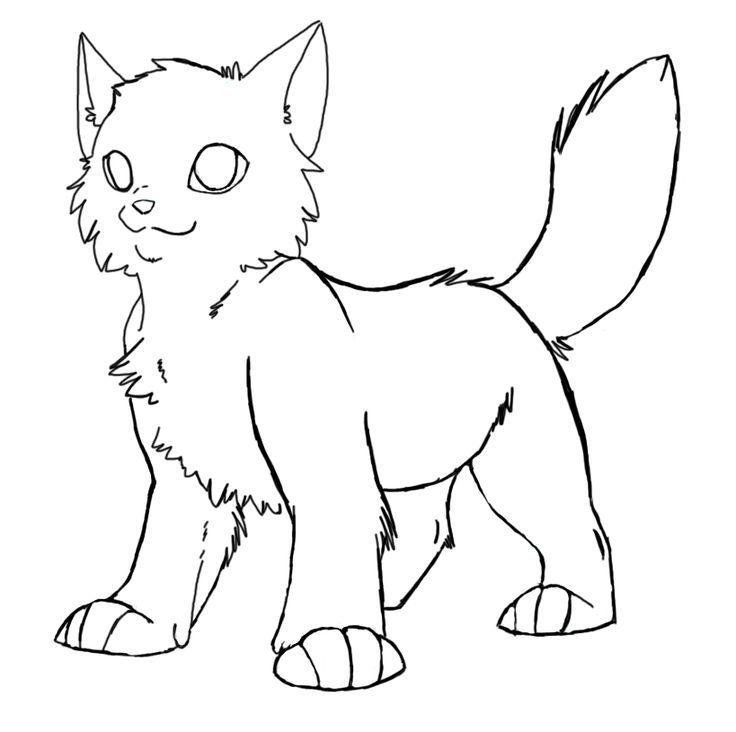 warrior cat coloring pages 21 best images about warrior cat coloring pages on coloring warrior cat pages