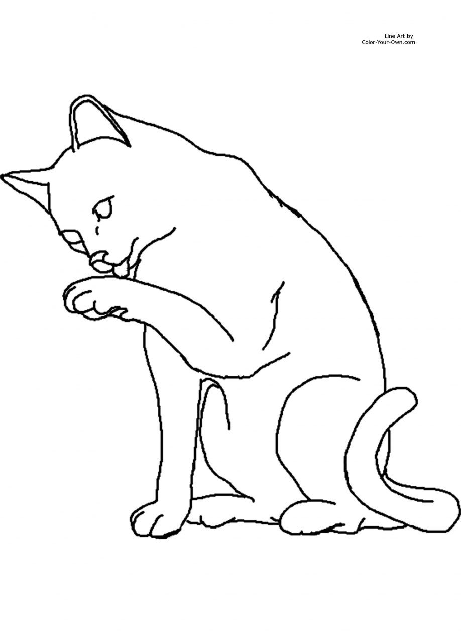 warrior cat coloring pages anime cats coloring pages at getdrawings free download coloring warrior pages cat