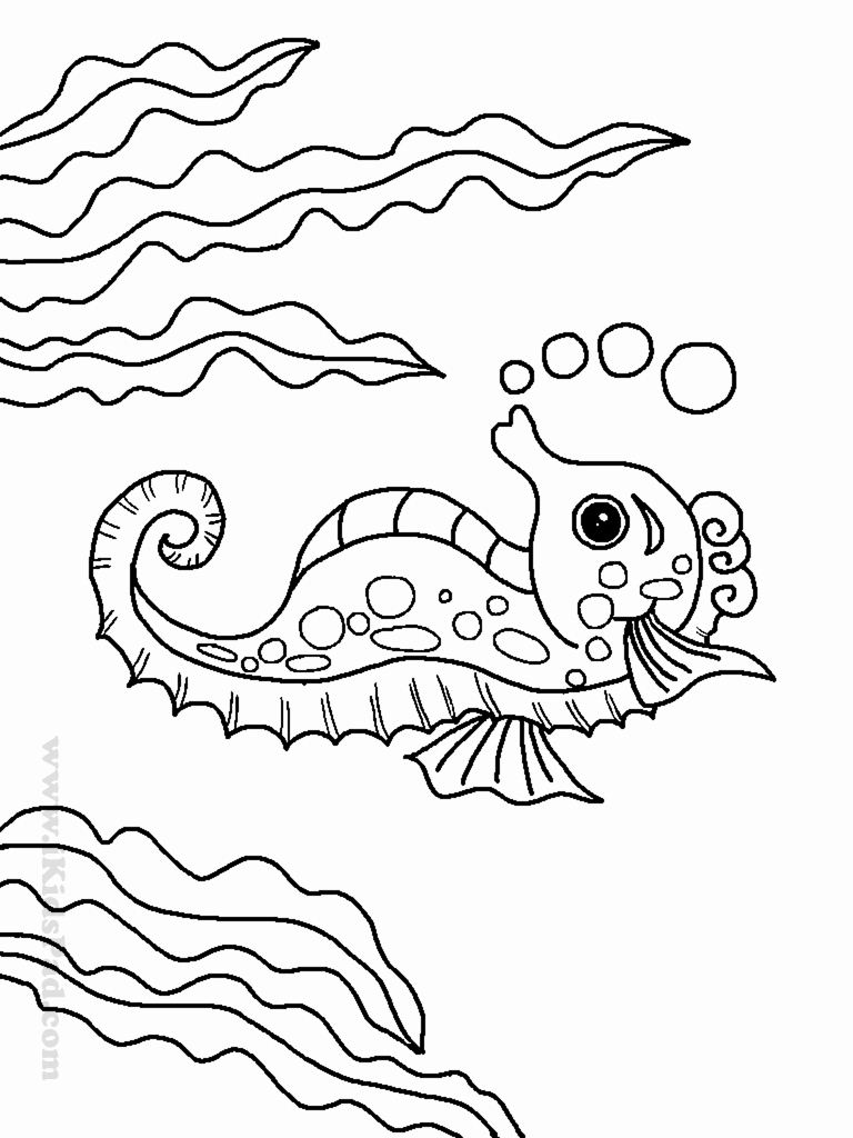 water animal coloring pages ocean drawing for kids at getdrawings free download animal coloring pages water