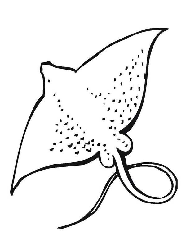 water animal coloring pages sea animals coloring page coloring page animal coloring pages water