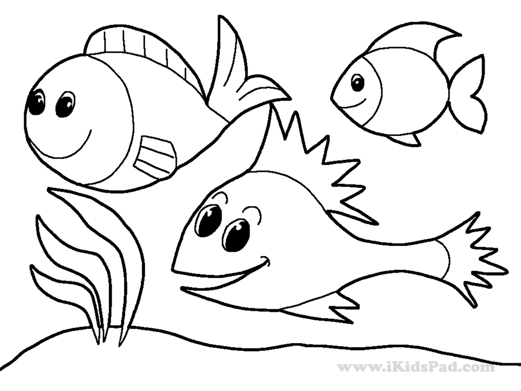 water animal coloring pages water animals coloring pages through the thousands of animal pages coloring water