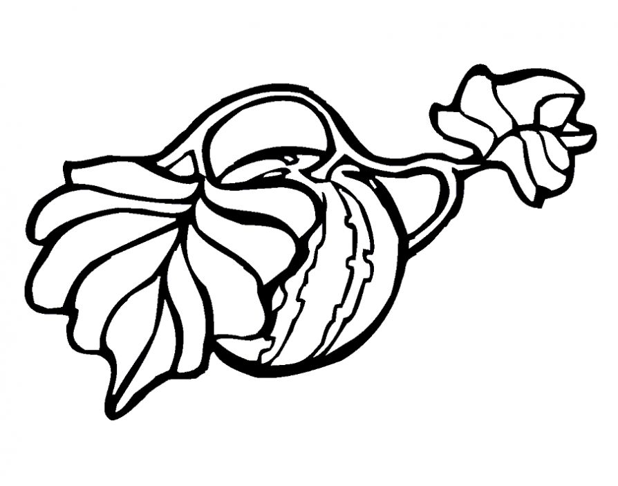 watermelon coloring pages watermelon coloring pages to download and print for free watermelon coloring pages