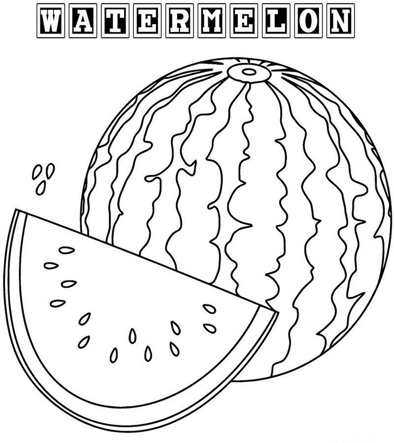 watermelon for coloring watermelon coloring book for kids fruit coloring pages for coloring watermelon