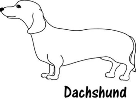 weiner dog coloring pages 16 best dachshund coloring pages images on pinterest dog weiner coloring pages