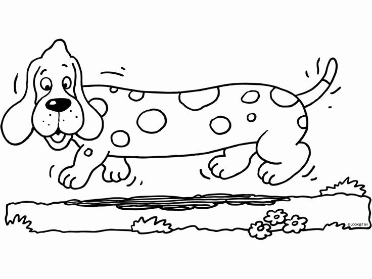 weiner dog coloring pages dachshund clube dog coloring page weiner dog coloring dog weiner pages coloring