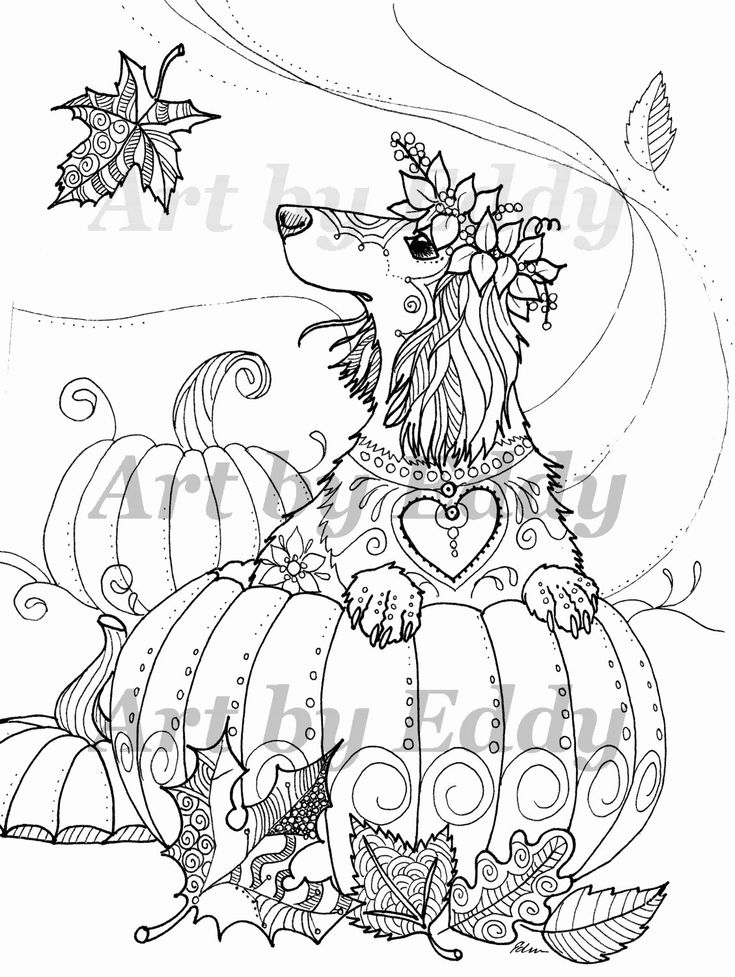 weiner dog coloring pages dachshund wiener dog coloring pages print coloring 2019 coloring dog weiner pages