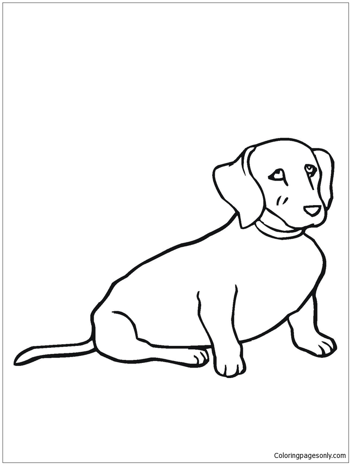 weiner dog coloring pages weiner dog coloring page elegant 228 best images about dog pages coloring weiner