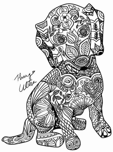 weiner dog coloring pages wiener dog drawing free download on clipartmag pages coloring weiner dog