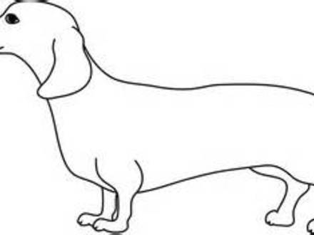 weiner dog coloring pages wiener dog free coloring pages coloring weiner dog pages