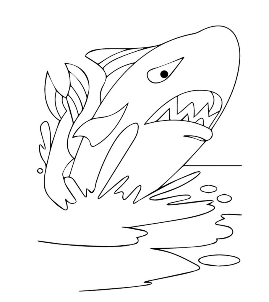 whale coloring picture free printable whale coloring pages for kids coloring whale picture 1 1
