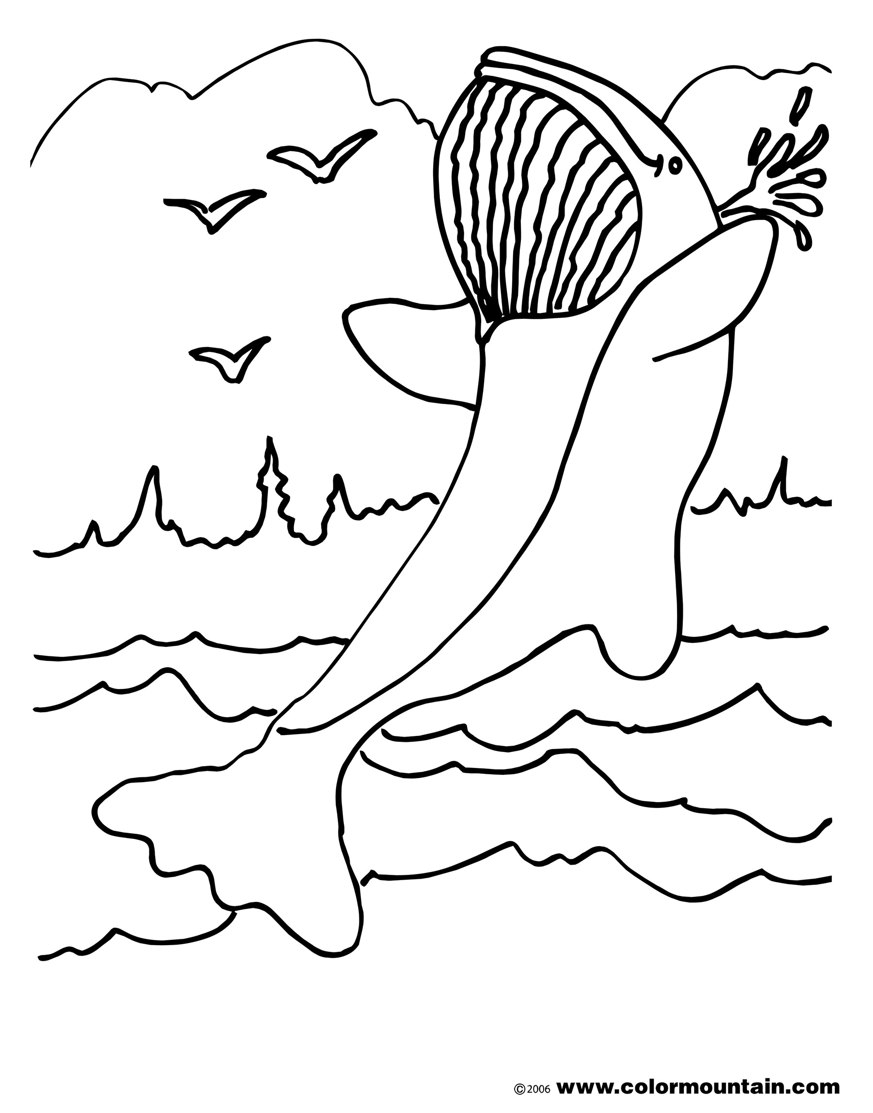 whale coloring picture free printable whale coloring pages for kids whale coloring picture