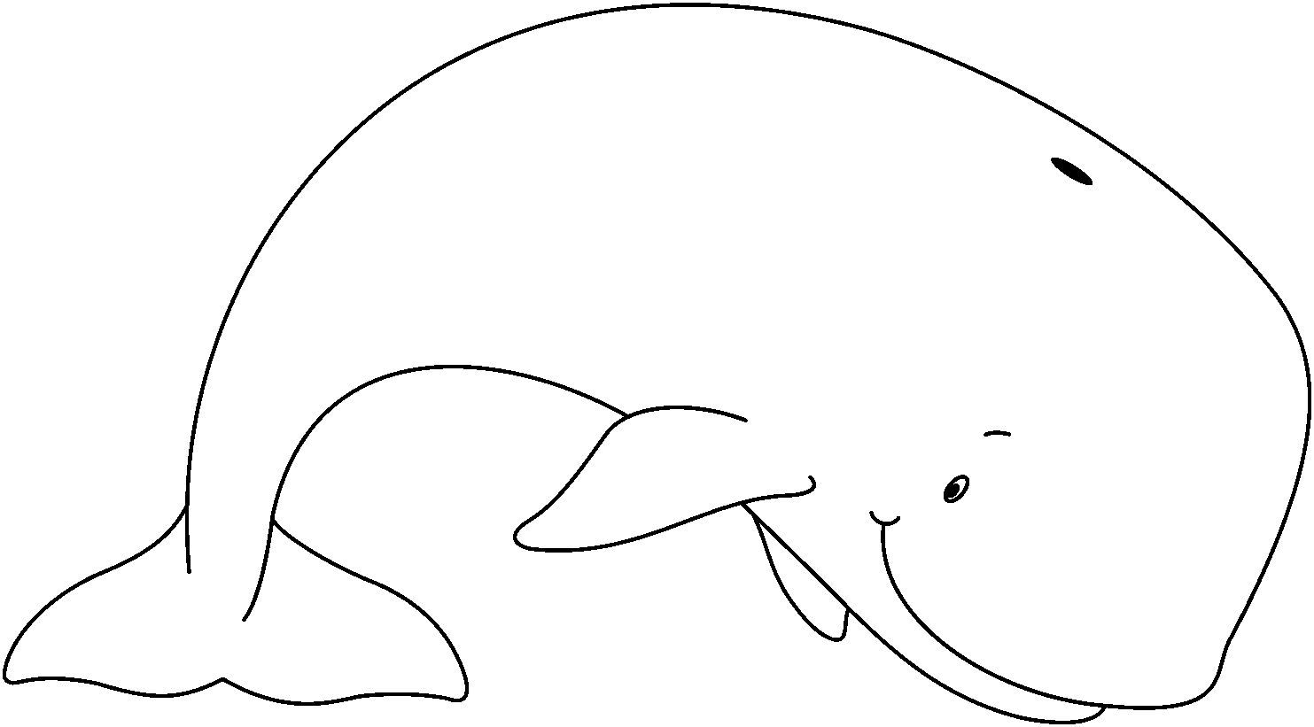 whale outline whale outline svg clip arts download  download clip art whale outline