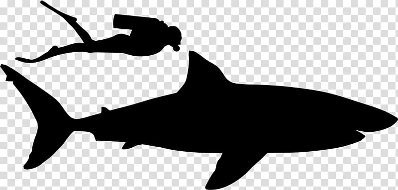 whale shark silhouette download great white shark clipart jumping great white silhouette whale shark