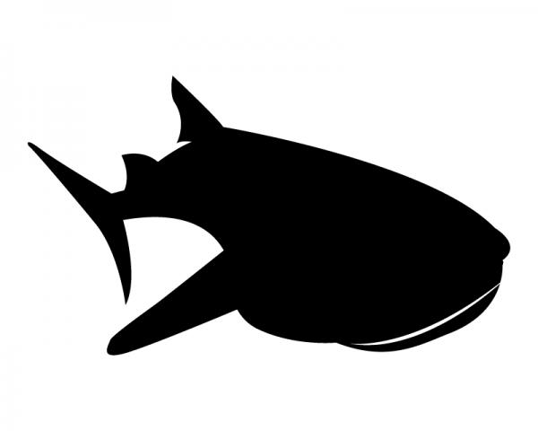 whale shark silhouette humpback whale silhouette at getdrawings free download silhouette shark whale