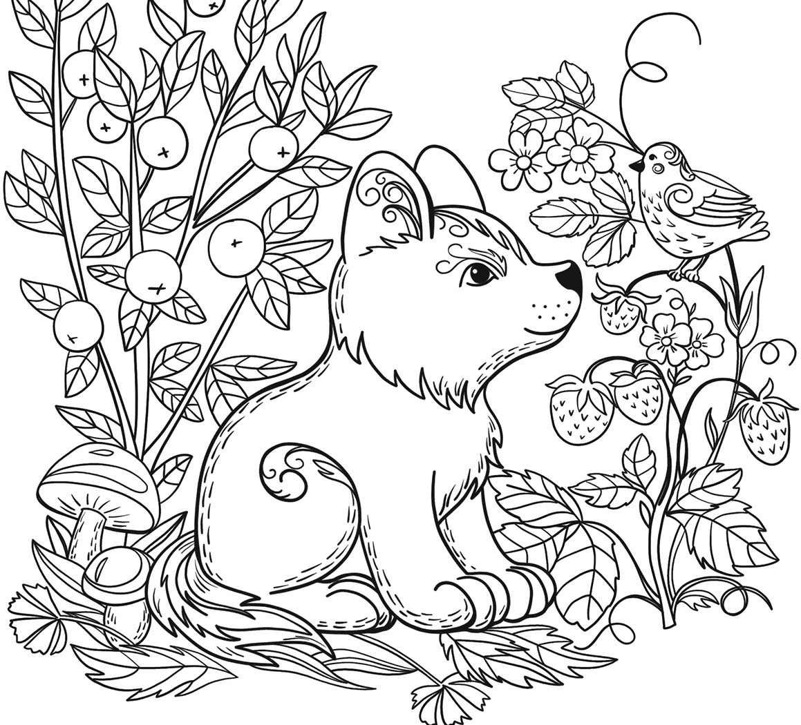 wild animals coloring pages wolf wild animals coloring pages for kids printable free wild coloring pages animals