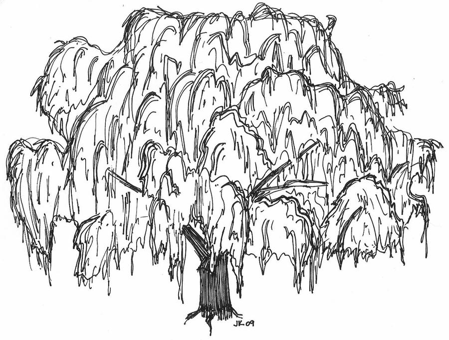 willow tree coloring page mwillow tree pencil coloring pages page coloring tree willow