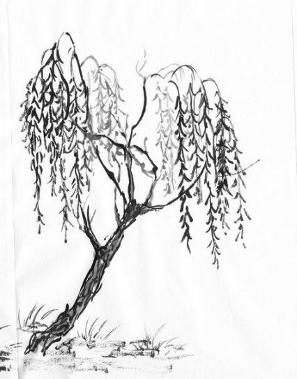 willow tree coloring page new willow tree sketch tattoo to draw 51 ideas tattoo willow coloring page tree