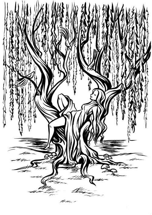 willow tree coloring page willow tree coloring pages for kids free printable willow page willow tree coloring