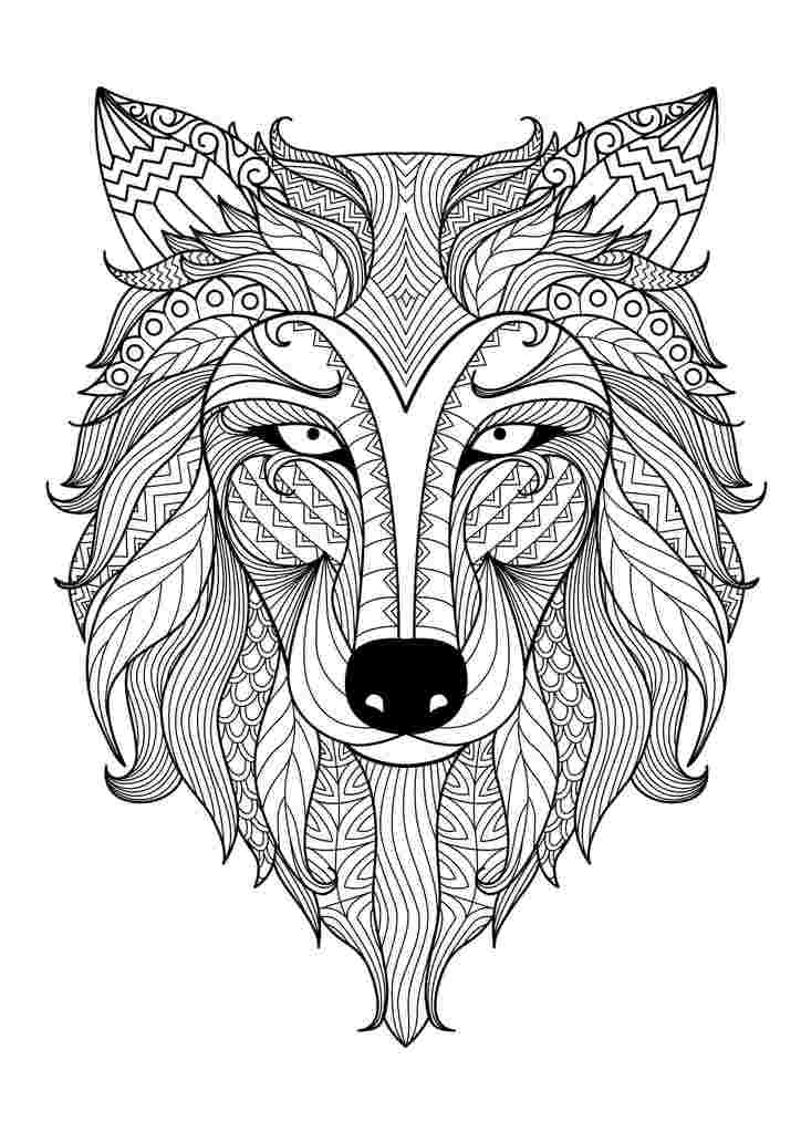 wolf coloring pages for adults wolf coloring pages for adults fall animal adult for pages adults wolf coloring