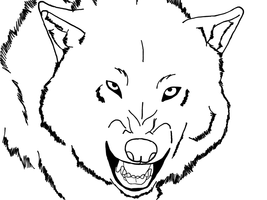wolf face coloring pages wolf face coloring pages face pages coloring wolf