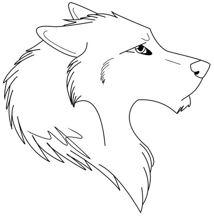 wolf face coloring pages wolf face outline coloring home face pages wolf coloring