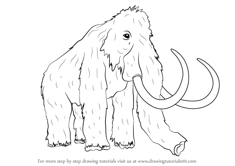 wooly mammoth drawing woolly mammoth 19th century artwork wall art canvas drawing wooly mammoth