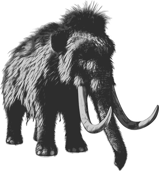 wooly mammoth drawing woolly mammoth drawing at paintingvalleycom explore drawing wooly mammoth