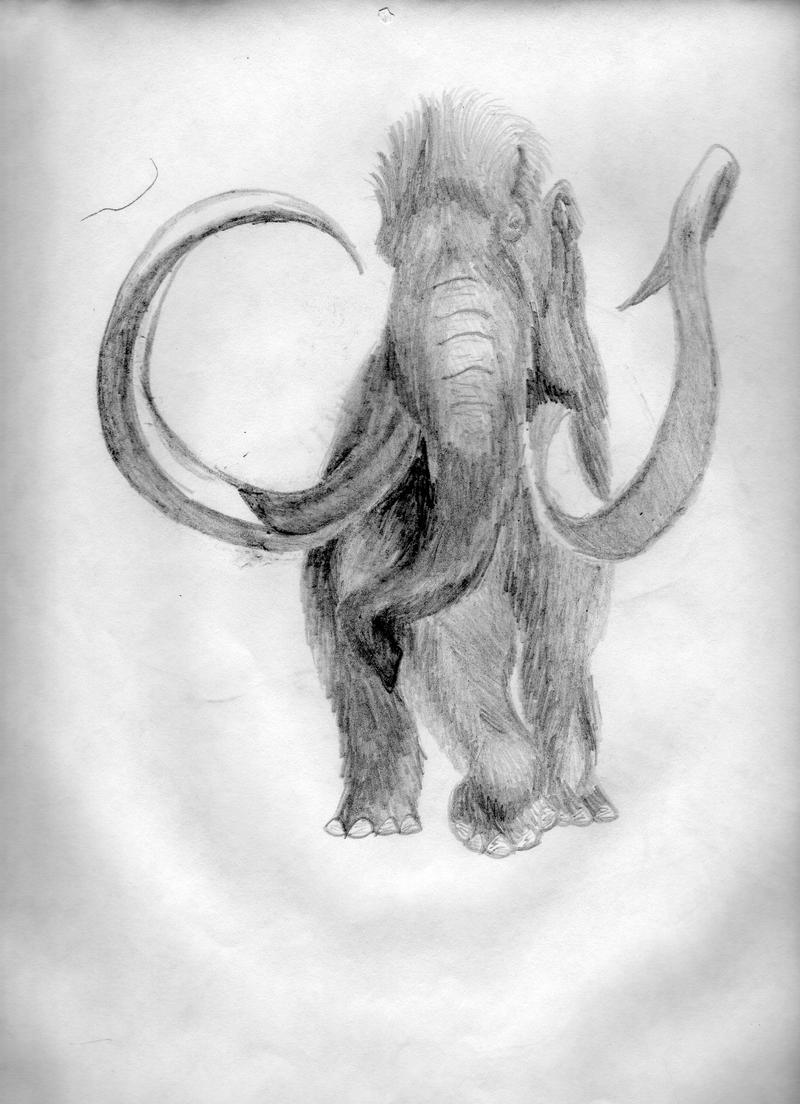 wooly mammoth drawing woolly mammoth drawing by stanley morrison wooly mammoth drawing