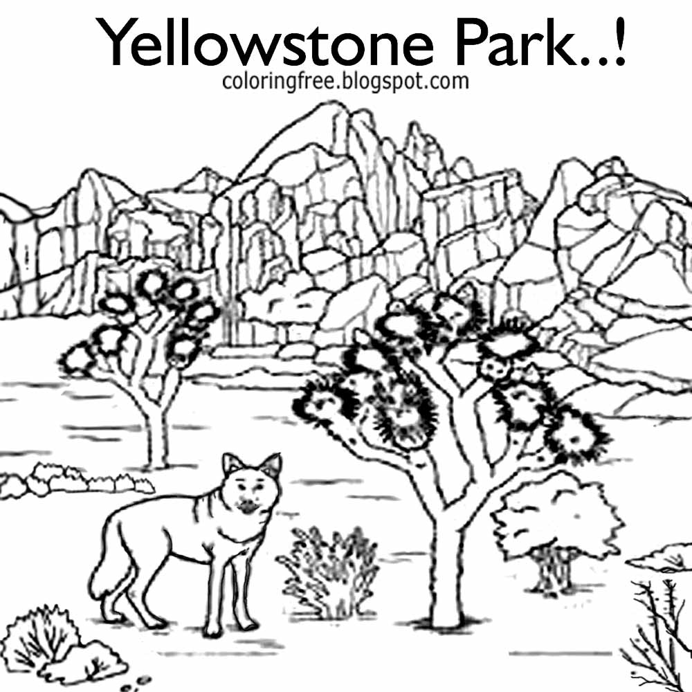 yellowstone national park coloring pages yellowstone national park coloring pages at getcolorings coloring pages yellowstone national park