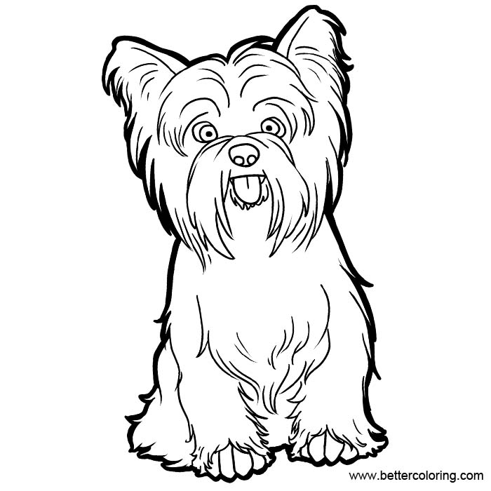 yorkie coloring pages yorkie coloring pages black and white free printable coloring pages yorkie