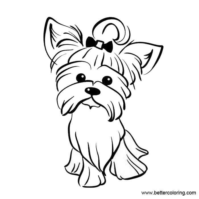 yorkie coloring pages yorkshire coloring pages coloring pages to download and pages yorkie coloring
