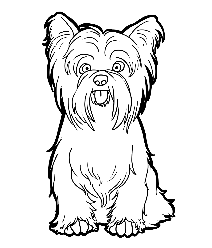 yorkie coloring sheet yorkie coloring pages black and white free printable coloring yorkie sheet